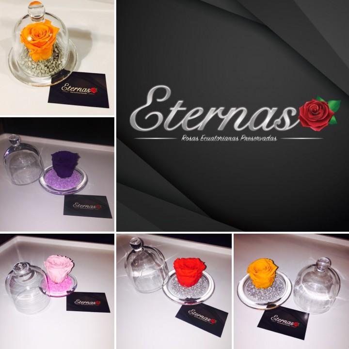 Rosas ecuatorianas naturales y Eternas