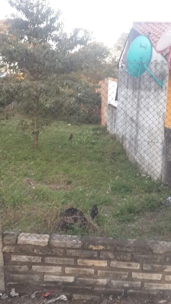 Terreno en Lambaré Puerto Pabla