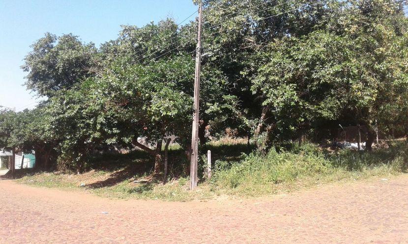 Terreno en Lambaré San Roque